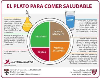 El plato de Harvard, guía para comer saludable