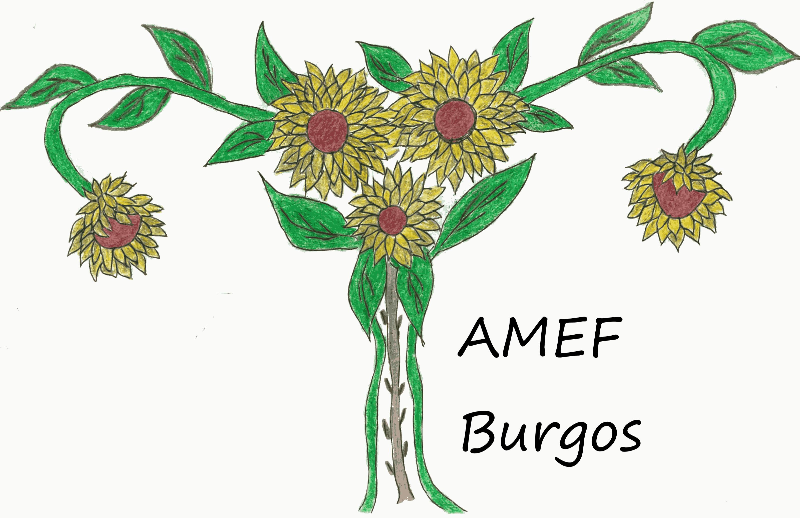 logo de asociación mujeres con endometriosis y sus familiares en Burgos